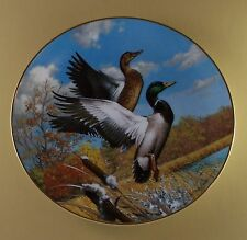 Autumn Flight Plate North American Ducks Duck +Coa