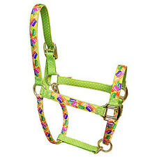 Jelly Beans w/Green Polka Dots Accent Fashion Horse Halter