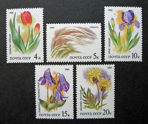Russia 1986 #5424-5428 MNH OG Russian Steppes Flora Plants Flowers Set $2.60!!