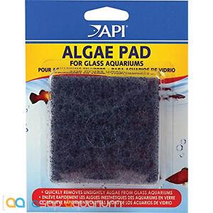 API Algae Pad For Glass Aquariums Algae Scrubbing Pad