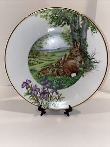 Southern Living Gallery Forest Families Eastern Cottontail Rabbit Vintage Plate