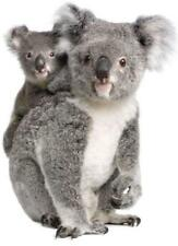 Pegatina adesivi adhesivo sticker coccion autoadhesiva habitacion koala ref1