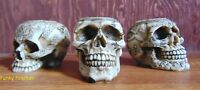 Set of 3 ~ Skull tea T light candle holders ~ Celtic Gothic cool ornament gift