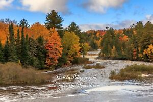 "Landscape photograph ""Tahquamenon Falls""  Calvin Chen signed(50 Megapixel)"