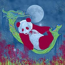 Panda Colorful Psychedelic Night Sky Moon Stars - 10x10 Archival Print Matte