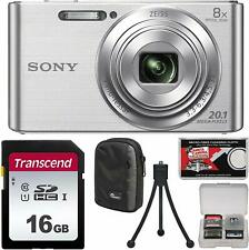 Sony Cyber-Shot DSC-W830 Digital Camera (Silver) with 16GB Card + Case + Flex Tr