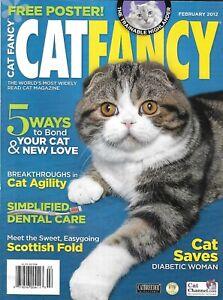 Cat Fancy Magazine Bonding Agility Easy Dental Care Scottish Fold Poster 2012