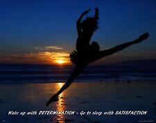 Ballet Dance Motivational Poster Art Print Shoes Flats Tutu Leotard Skirt MVP476