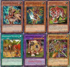 Yugioh Amazoness Deck - Pet Liger, Tiger, Swords Woman, Chain Master, Shamanism