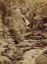 c1890 | John Watt BEATTIE | Nora River Falls TASMANIA | large albumen photograph