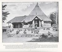 1897 Vittoriano Stampa ~ Alimentazione Scimmie Presso Kakko India Simla ~ (