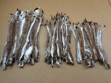 #1 Quality Tanned Brown Ermine/Weasel/Fur/Crafts/Trapping/Stocking Stuffers