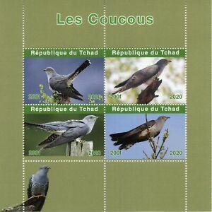 Chad Birds on Stamps 2020 MNH Cuckoos Cuckoo Fauna 4v M/S