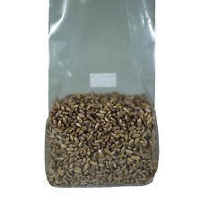 Sterilized Rye Berry Mushroom Substrate