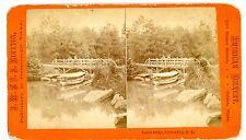 New York City NYC -LOCUST BRIDGE IN CENTRAL PARK-J.W./J.S. Moulton Stereoview