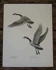 Canadian Geese James P.Townsend Vintage 1985 Signed Canada Goose Duck Art Print