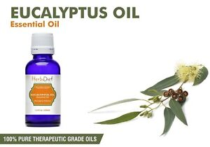 Natural Eucalyptus Essential Oil 100% Pure Aromatherapy Oils Therapeutic Grade