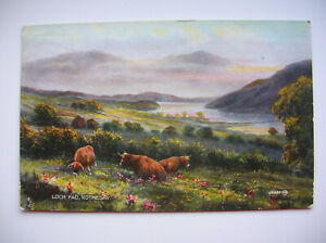 Loch Fad, Rothesay, Bute.  (1927 – Valentine's Valesque -– Highland Cattle)