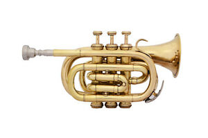 **MARVELOUS! NEW BRASS Bb FLAT POCKET TRUMPET FREE HARD CASE+M/P 6 DAYS DELIVERY