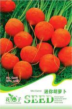1 Pack 20 Mini Carrot Seeds Daucus Carota Organic C078