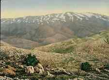 Mont Hermon. P.Z. vintage photochromie.  photochromie, vintage photochrome