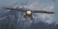 """American Icon"" Daniel Smith Western Fine Art Giclee Canvas - Bald Eagle"