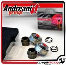 Andreani BPF Pistons Kit Big Piston Fork Showa Ducati 899 Panigale 2013>2014