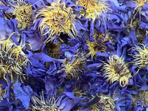 50 Gramm Blauer Lotus ganze Blüten | Blue Lotus | Nymphaea caerule