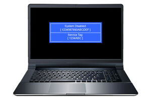 DELL, ALIENWARE, SYSTEM DISABLED, BIOS PASSWORD UNLOCK AND REMOVAL SERVICE