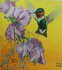 Hummingbird on Flower by Lynn Bogue Hunt