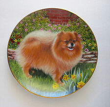 """Springtime Delight"" Pomeranian Plate By Barbara Higgins Bond A Limited Edition"