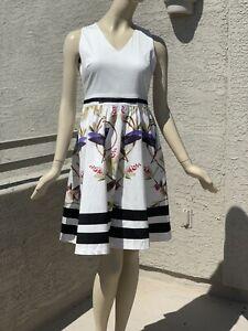 Irregular Ted Baker Hummingbird Cotton Dress