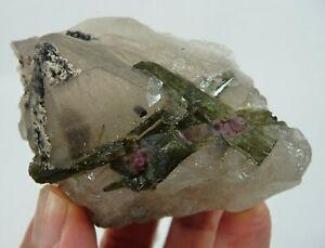 Rare Watermelon Tourmaline in Quartz Crystal Specimen Brazil 108 grams