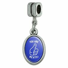 You Are Neato Cool Funny Humor Italian European Style Bracelet Oval Charm Bead