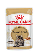 Royal Canin  Maine Coon Wet 12x 85g Adult Cat Food