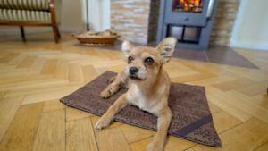 Elaspace® orthopädische 3 in 1 Haustierdecke für Hund und Katz | S | snake braun