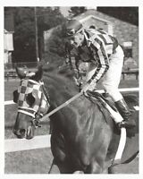 SECRETARIAT & RON TURCOTTE - ORIGINAL 1973 PHOTO AFTER THE PREAKNESS STAKES!