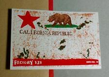 CALIFORNIA REPUBLIC FACTORY 131 SANTA CRUZ CA BEAR STAR HELMET CASE MED STICKER
