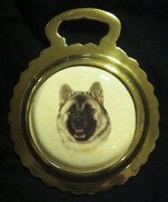 New Dog Akita Inu Ceramic Harness Horse Brass Akita Dog Lover! Wow Your Walls!