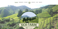 Website Farm Specialties Food includes hosting email and domain name