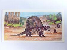 Brooke Bond Prehistoric Animals tea card 36. Dimetrodon. Dinosaurs.