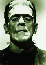 FRANKENSTEIN 1931 MOVIE CLASSIC CULT POSTER PICTURE WALL ART PRINT A3 AMK2412