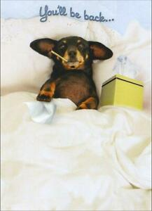 Get Well Greeting Card - Dachsund in Bed