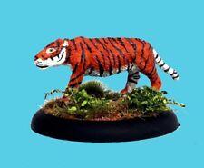 Aa107 Tiger