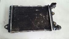 Radiatore Radiatori Acqua Raffreddamento Ape TM P703 1984 1997 Diesel Radiator