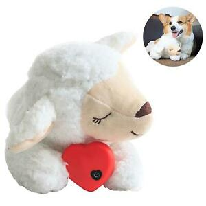 Little Buddy Heart Beating Sheep for Dog Puppy Seperation Anxiety Calming Toy