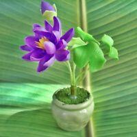 Lotus flowers purple handmade Ceramic pot Miniature waterlily Dollhouse Thailand