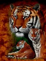 Brown Tiger print100% cotton S/S dark tan t-shirt new fashion med L XL