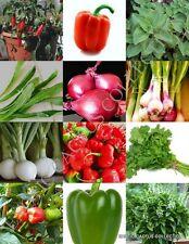 Herbs & Spices Mix heirloom flavor garden non gmo assorted edible seed 150 seeds