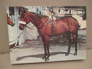 RED RUM 500 PIECE DE-LUXE JIGSAW PUZZLE ( VINTAGE PUZZLE & AROUND 40 YEARS OLD )